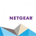 Alferaz mantenimientos informaticos partner de netgear